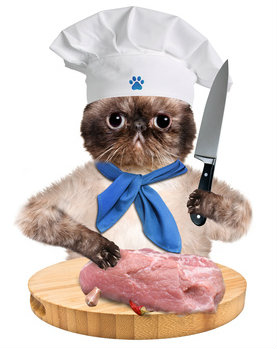 If cats could prepare their own food, most would choose chicken, the best selling cat food flavor