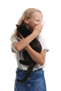 This little girl is allergic to cats. But the Purina Institute is working on a solution for cat allergies.