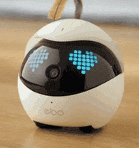 A robotic cat toy could be just what your cats are hoping for this holiday season.